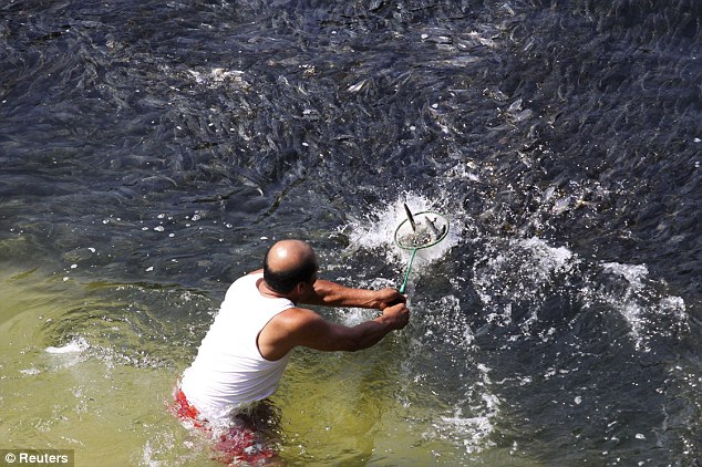 Fishermen flocked to the water to take advantage of the surge