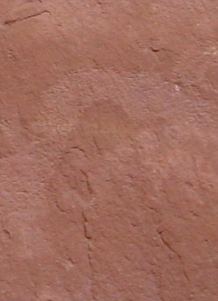 Now you see it... A lighter patch of this rock at the Kachina Bridge formation in Utah appears to form the image of a dinosaur - but is it?