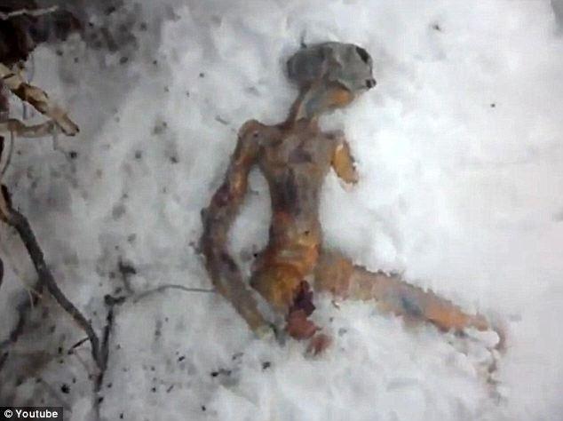 Alien Body Hoax