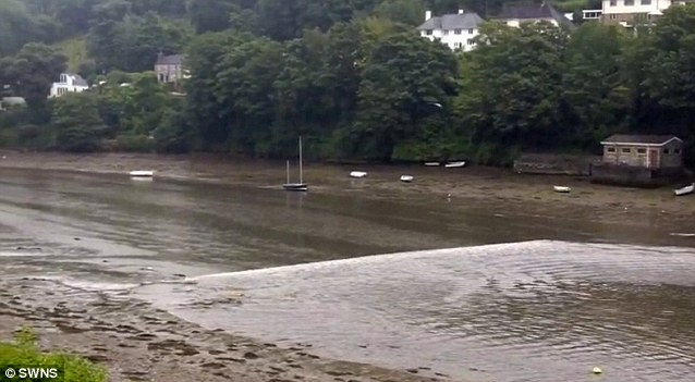 No longer one-way: A massive underwater landslide 200miles off the coast of Cornwall caused a series of mini-tsunami waves and tides. A wave travels against the natural flow of the River Yealm in Devon
