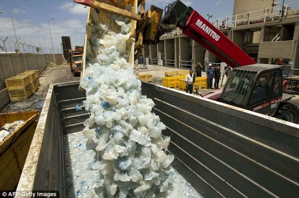 Nuisance: A digger drops jellyfish cleared from the power station in Hadera, Israel