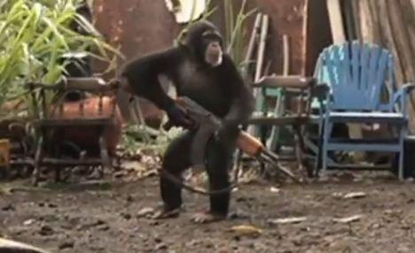 La ciencia ficción: la imagen de la subida de la nueva película de El planeta de los simios