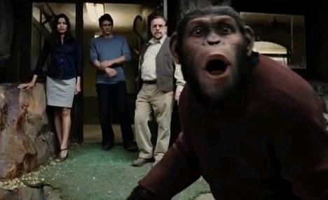 En la búsqueda de la película los científicos para la cura de Alzheimer ¿s crear un nuevo tipo de simio con la inteligencia humana