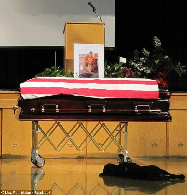 Sadness: Navy SEAL Jon Tumilson's Labrador retriever Hawkeye was loyal to the end, as he refused to leave his master's side during an emotional funeral