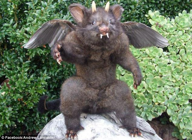 Hellish vision: This winged creature, with fangs and horns, is the sort of thing that you would expect to find among Satan's minions... rather than in a suburban back garden in New Zealand