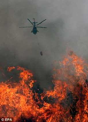 Burning up: A Russian helicopter drops water on a raging fire in the village of Polyaki-Maydani, Ryazan region, during August 2010