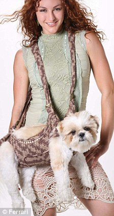 Canine carrier: The Puppoose costs £37 and is the new way to carry your pet