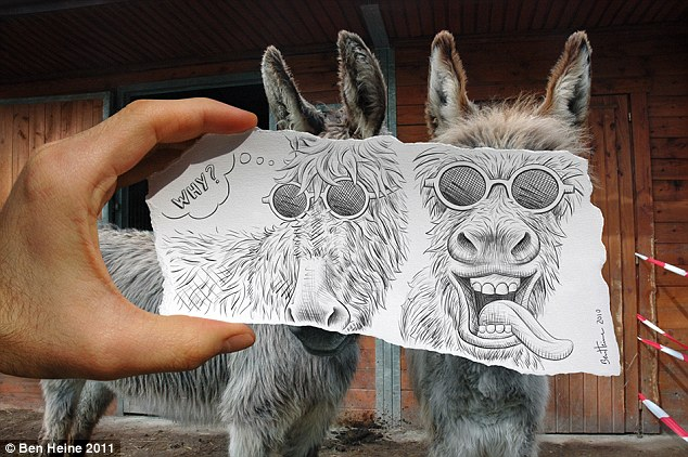 What an ass: These two donkeys are given a Heine makeover, complete with crazy sunglasses and thought bubbles