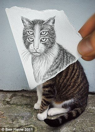 Double vision: You could be forgiven for thinking you were under the influence of alcohol looking at this warped drawing of a cat