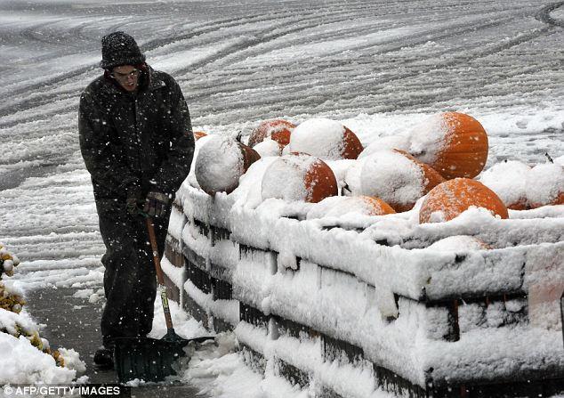 Calabazas blancas: Un vendedor de hoy en día limpia la nieve fresca al lado de su puesto de venta de calabazas de Halloween en un mercado de agricultores en la ciudad de Westminster, Maryland