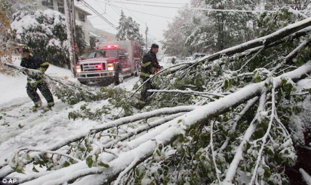Bloqueo: Los bomberos retirar árboles de la carretera en West Harrison, New York
