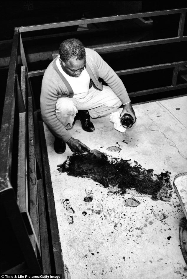Clean-up: Motel owner's brother Theatrice Bailey attempts to clean blood from the balcony, hours after the 6 pm shooting