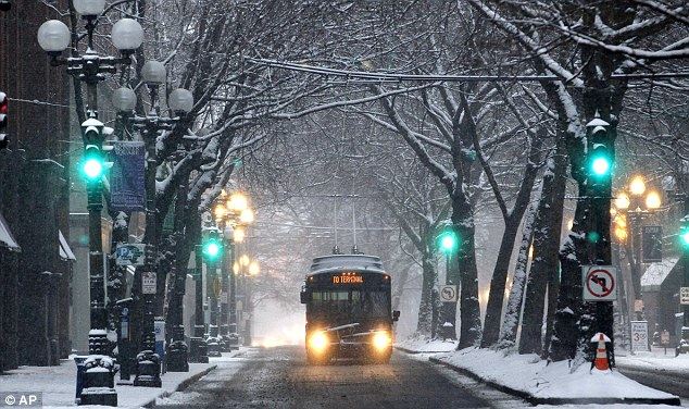 Winter wonderland: A Metro bus drives under a canopy of snow-covered trees in Pioneer Square in Seattle