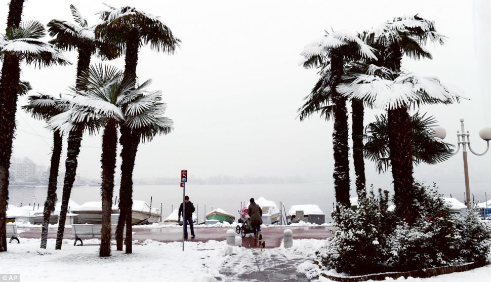 Incongruous: Snow-covered palm trees at lake Lungolago in Lugano, Switzerland