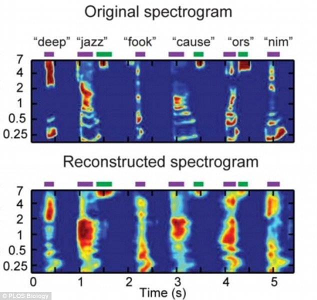Words with scientists: The top graphic shows a spectrogram of six isolated words (deep, jazz, cause) and pseudo-words (fook, ors, nim). At bottom, the speech segments how the words were reconstructed based on findings from the electrodes