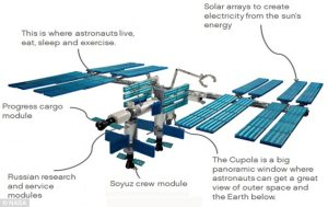 Building the International Space Station brick by brick