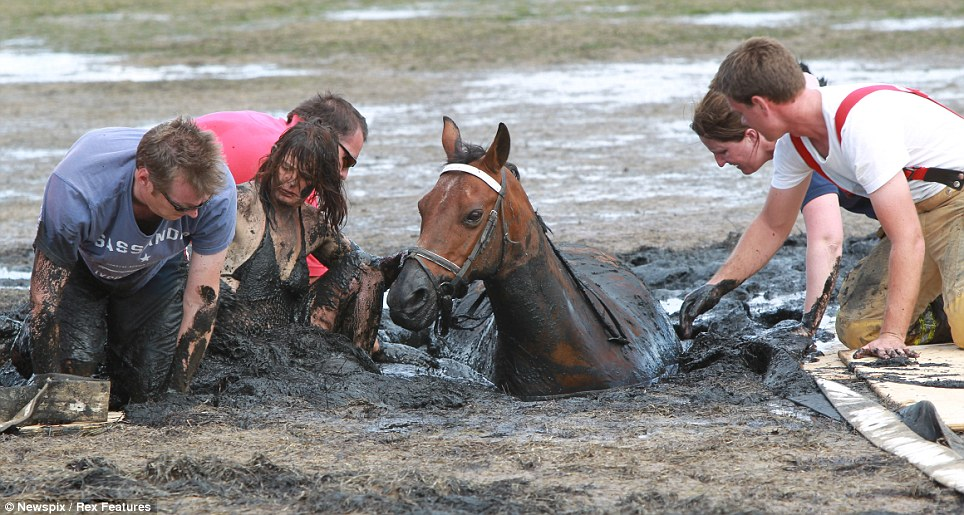Stuck fast: Rescuers look for ways to free the stricken horse as time is slowly running out for him