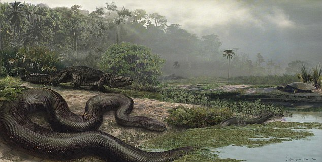 Titanoboa cerrejonensis measured 48 feet, weighed as much as a car, and had a body more than a yard thic. The monster relative of the boa constrictor lived in northern Colombia 60 million years ago
