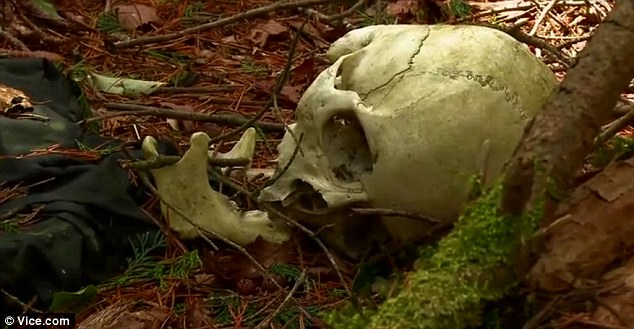 Remains: A human skeleton uncovered by Azusa Hayano and the film crew in the Aokigahara Forest, Japan's suicide hotspot