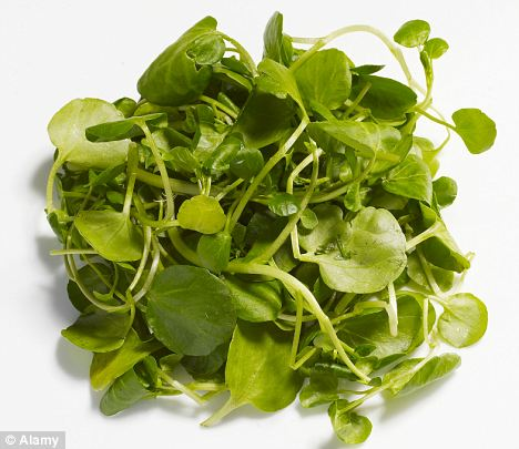 Watercress can reduce DNA damage caused during exercise