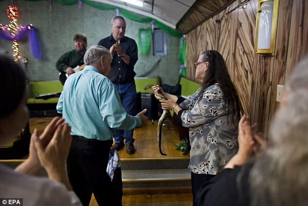 Members and visitors to the Church of the Lord Jesus, pass around a timber rattlesnake during homecoming service at the church