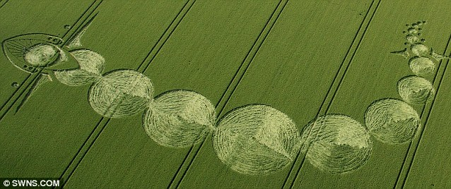 Intriguing: A representation of the transit of Venus which has been created as a crop circle on Woodborough Hill, Alton Barnes. The huge, complex, figure appeared during the course of one night in the Wiltshire countryside
