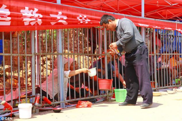 'Human zoo': The cages are so small the 'inmates' are unable to stand and their conditions have outrages human rights campaigners in China who accuses the festival of keeping a 'human zoo'