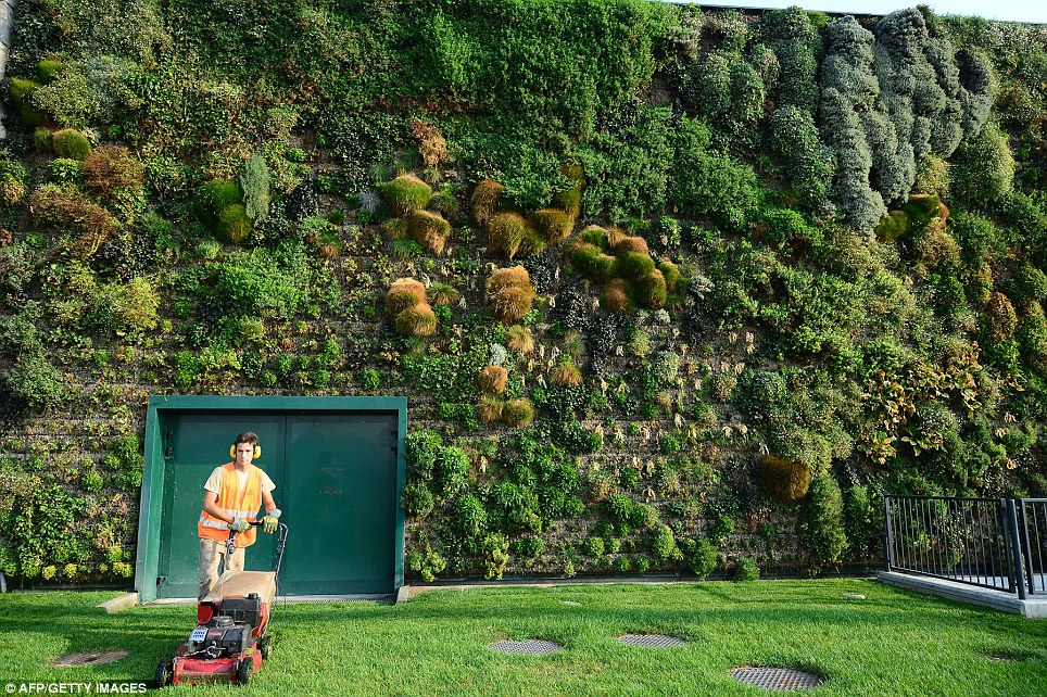 Keeping things tidy: A gardener tends to the lawn where customers can lounge after a busy day of shopping