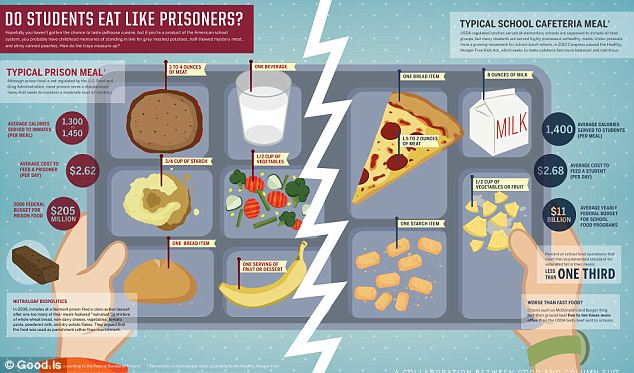 Do students eat like prisoners? Graphic shows the average contents of a jailhouse meal versus a school lunch