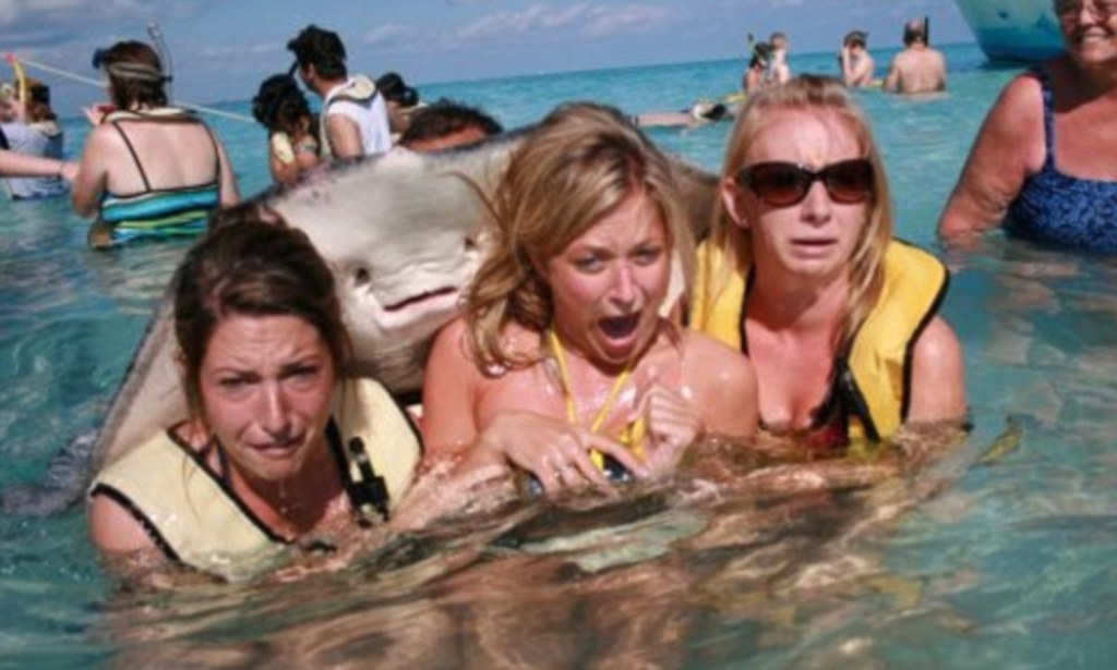 The Best Photobomb Ever Bikini Clad Women Shriek In
