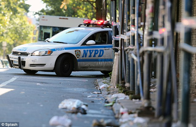 Rising: An NYPD patrol car in Brooklyn; the increase was the result of an upward swing in assaults, which rose 22 percent, from 4million in 2010 to 5million last year