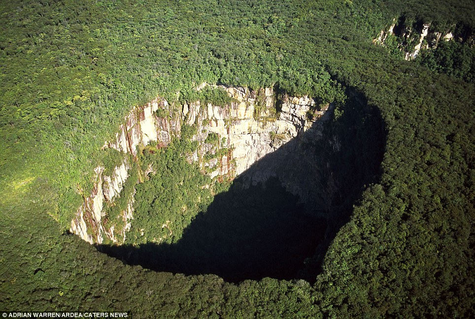 Rainforest sinkhole: (Jaua-Sarisarinama National Park, Venezuela) A sinkhole is the natural depression of or hole in the Earth's surface