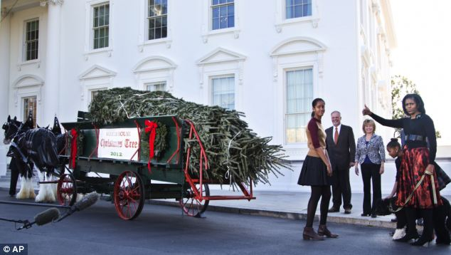 'We'll take it!': Mrs Obama gives a thumbs up to the tree, which was picked out last month