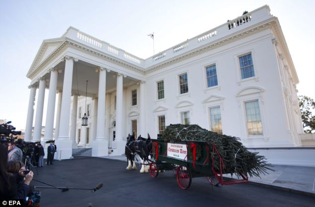 Home: Press gather outside the White House to welcome the 19-ft tall Christmas Tree on Friday
