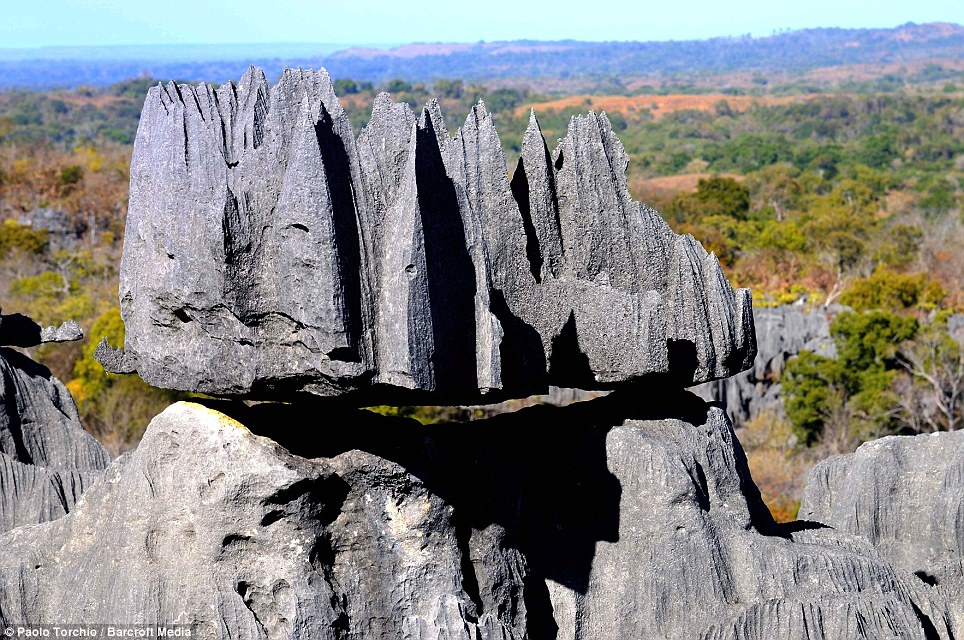 Rock in a hard place: A huge lump of limestone balances precariously on a stretch of Tsingy photographed in Madagascar. The colossal 'Grand Tsingy' landscape in western Madagascar is the world's largest stone forest