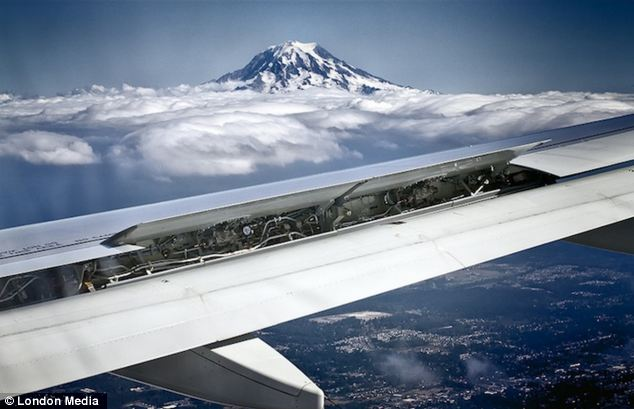 Sky high: As she flew over Mt. Rainier in Washington Bob Horowitz took this photo including the plane's wing