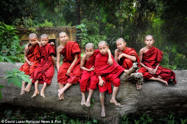Seven young monks sit on a log nearby their monastery in Yangon. The novice monks all grow up together in their monastery, forming a brotherhood of close connections