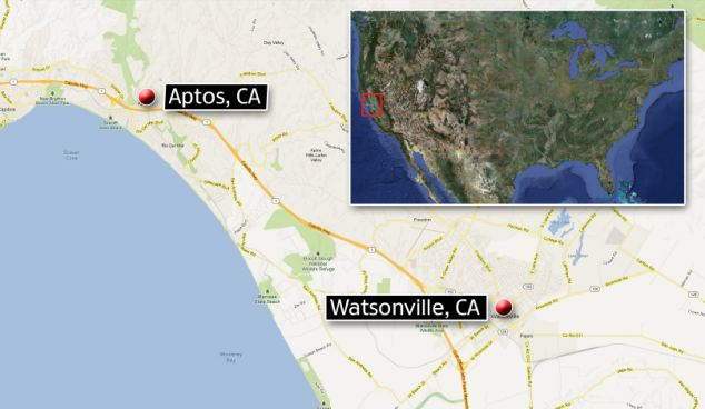 Thousands of squid carcasses are littering the 12 mile stretch of coastline from Aptos to Watsonville