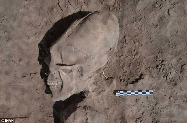 One of the 13 individuals with cranial deformation discovered in the cemetery in Mexico
