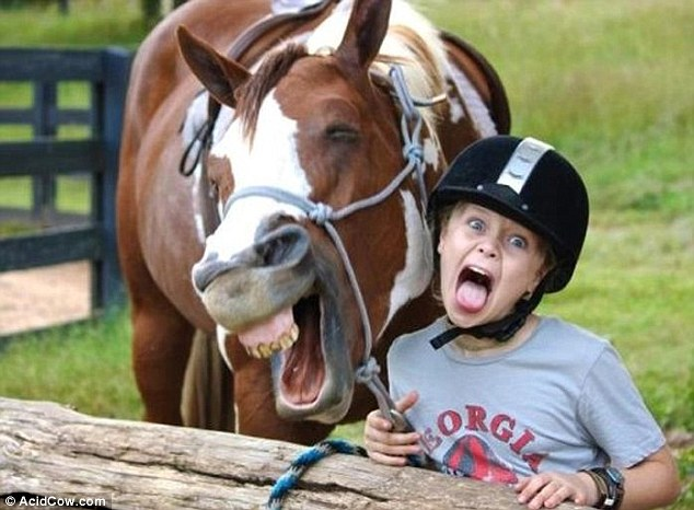Horsing about: A young girl enjoys a laugh with her four-legged friend