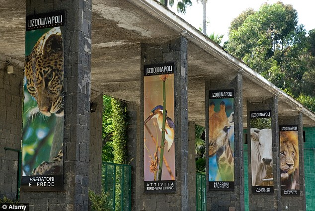 Naples Zoo is just two days away from closing if no new financial backer can be found