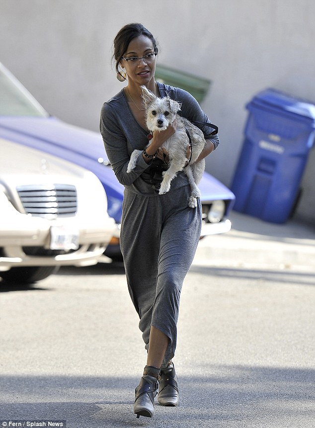 Picking up her beloved pooch: After arriving back in LA after New York Fashion Week, Zoe Saldana collects her rescue dog Mugsy from his sitter on Sunday