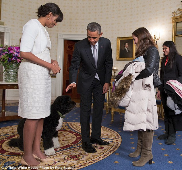 Family favorite: Obama reaches down to pet Bo the dog before greeting a visitor during an inaugural open day