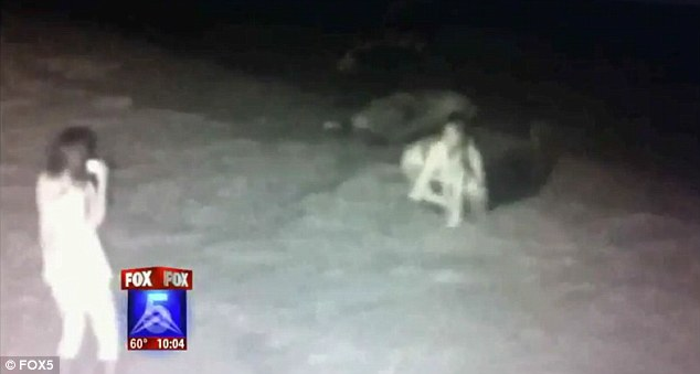 Police in San Diego are hunting two woman caught on infrared camera cruelly harassing local harbor seals in the middle of the night