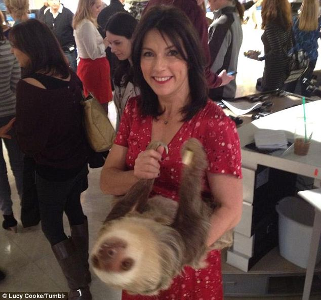 Adorable Sloth Stops By The Today Show And Receives Some