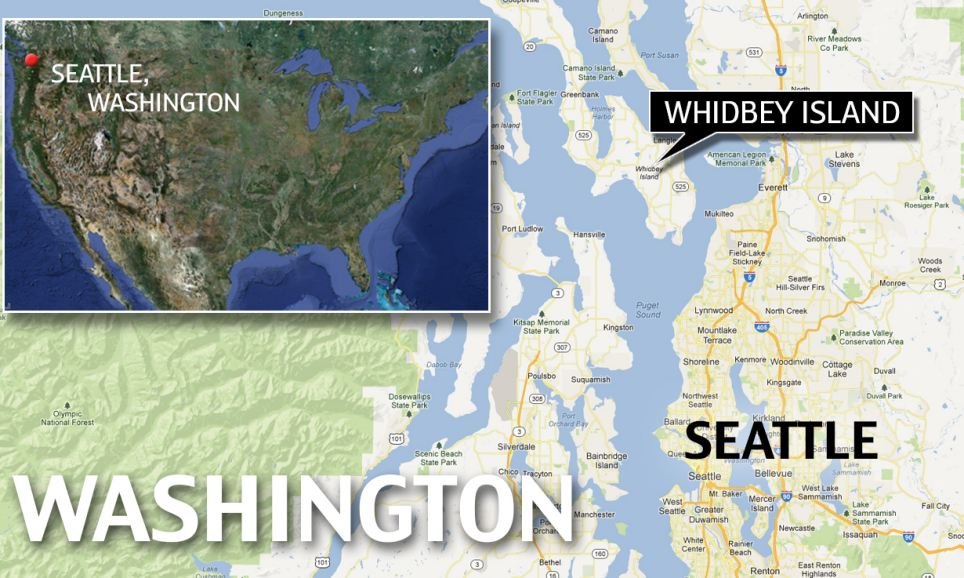 Location: The devastating landslide happened at Whidbey Island, which is off the coast of Washington State, just north of Seattle