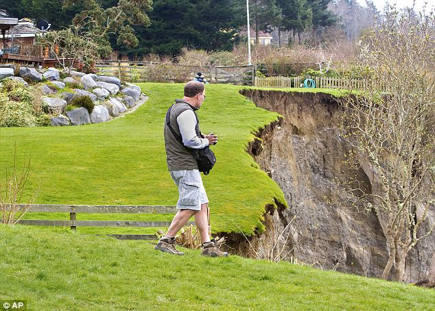 Surveying the damage: Geologist Terry Swanson looks at the edge of the cliff made by the landslide on Whidbey Island, Washington today