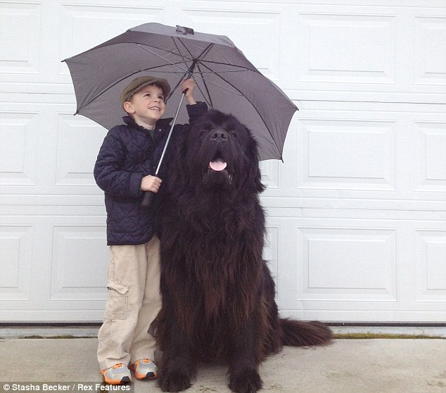 Shelter: Julian and Max snuggle under an umbrella. The pair were both born in the UK, and Julian still drinks tea in the morning