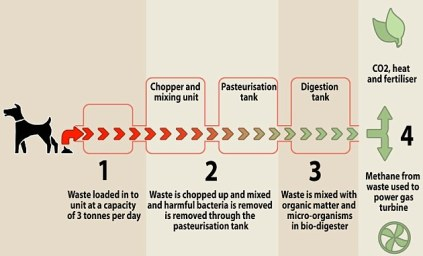 Creating a stink: How former banker Gary Downie's revolutionary dog waste system works