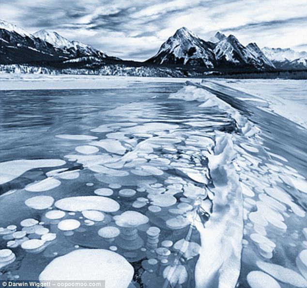 Waiting: The flammable gas bubbles within the ice, waiting until the thaw of spring